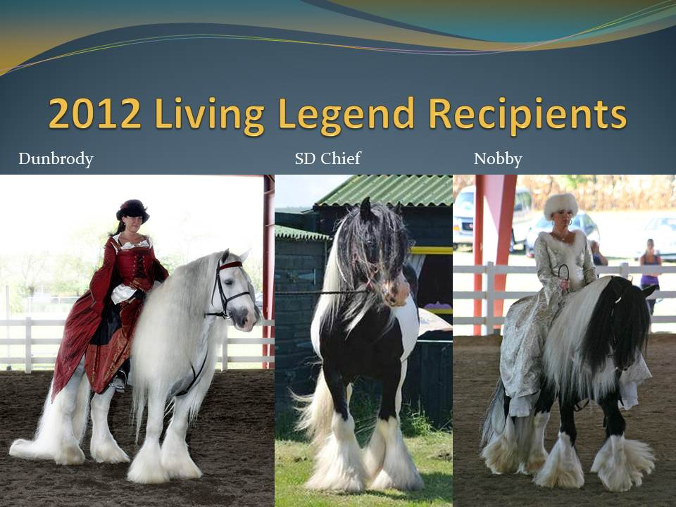 north american livestock expo quarter horse show